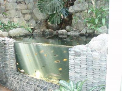 Outdoor Aquarium Garden Fountains