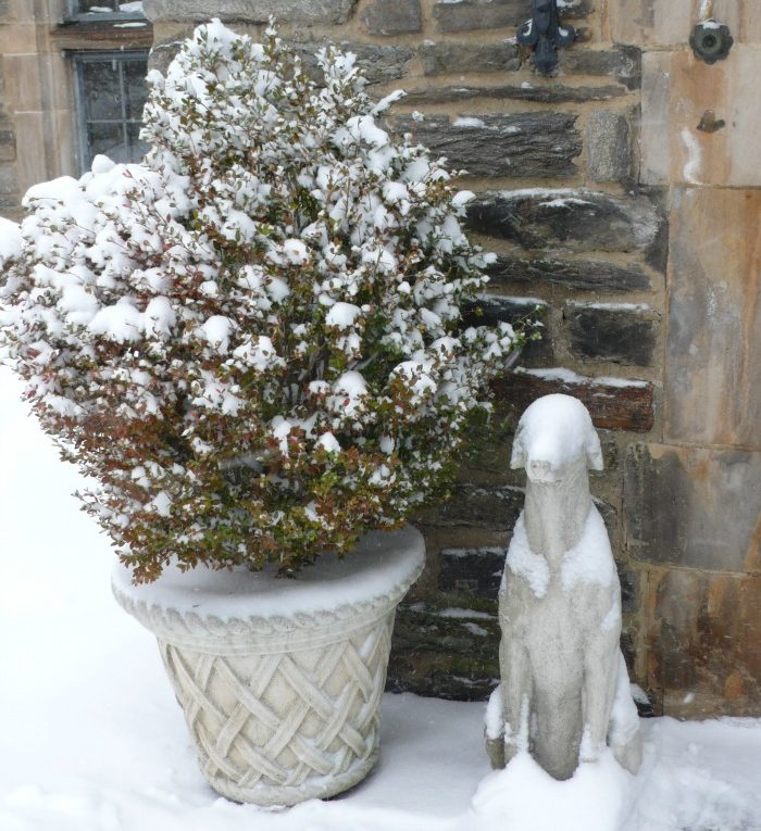 Statuary and Outdoor Decor