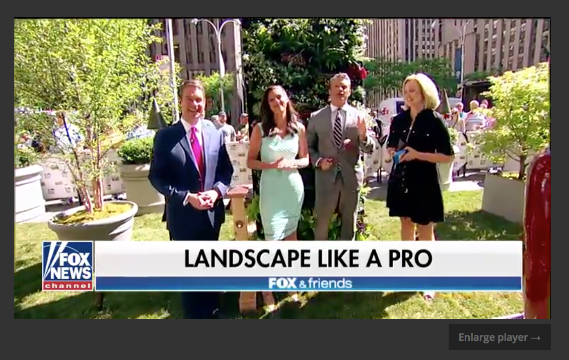 Campania International featured on Fox & Friends Garden-fountains.com